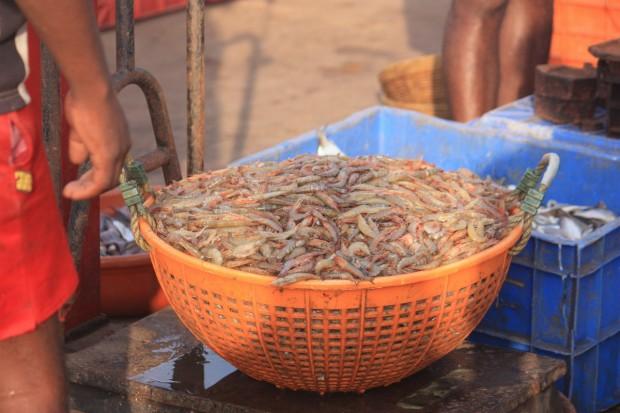 Морепродукты в Гоа